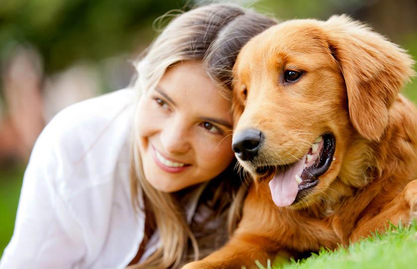 10 cosas que a tu perro no le gustan y debes evitar a toda costa