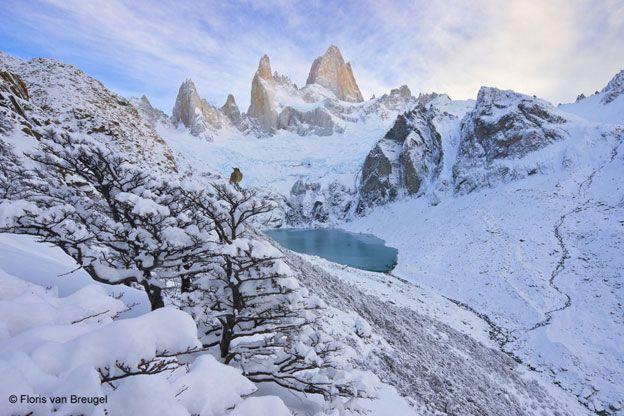Esta pequeña ave -llamada gaucho serrano- contempla la enormidad del Fitz Roy en la Patagonia argentina. La montaña está en el Parque Nacional Los Glaciares, que concentra la mayor capa de hielo fuera de la Antártica. La foto fue tomada por Floris van Breugel.