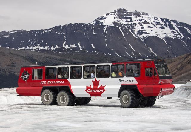 31- Terra Bus
